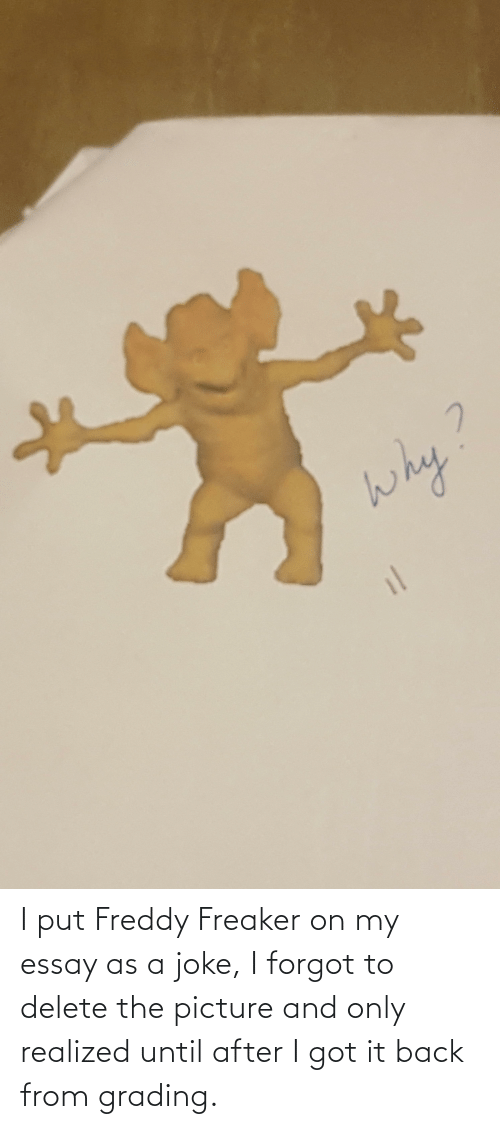 I Got It, Back, and Got: I put Freddy Freaker on my essay as a joke, I forgot to delete the picture and only realized until after I got it back from grading.