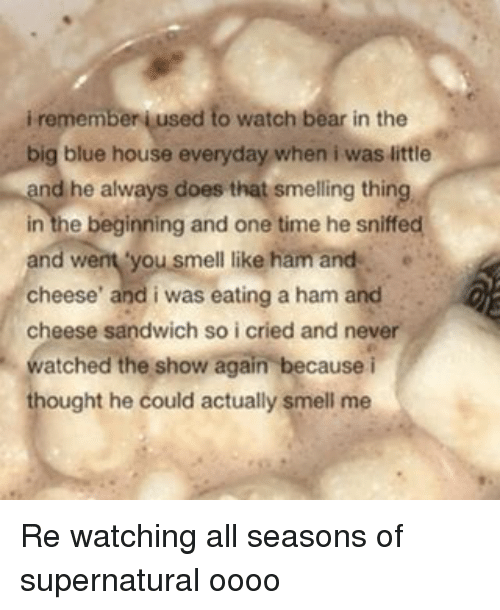 Smell, Tumblr, And Bear: I Remember Aused To Watch Bear In The Big
