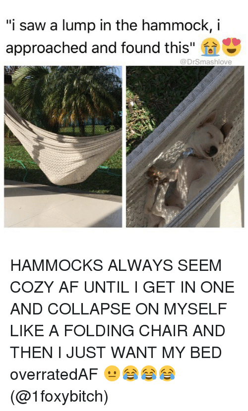 "Af, Memes, and Saw: ""i saw a lump in the hammock, i  approached and found this  @DrSmashlove HAMMOCKS ALWAYS SEEM COZY AF UNTIL I GET IN ONE AND COLLAPSE ON MYSELF LIKE A FOLDING CHAIR AND THEN I JUST WANT MY BED overratedAF 😐😂😂😂 (@1foxybitch)"