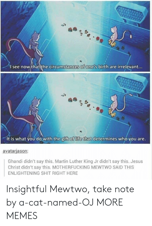 Dank, Jesus, and Life: I see now that the circumstances of one s birth are irrelevant...  It is what you do with the gift of life that determines who you are.  avatarjason:  Ghandi didn't say this. Martin Luther King Jr didn't say this. Jesus  Christ didn't say this. MOTHERFUCKING MEWTWO SAID THIS  ENLIGHTENING SHIT RIGHT HERE Insightful Mewtwo, take note by a-cat-named-OJ MORE MEMES