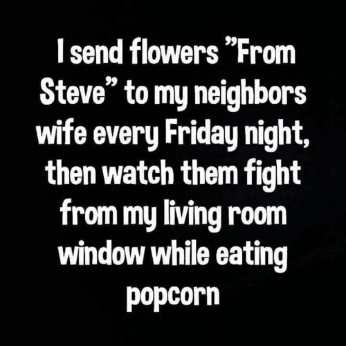 "Friday, Memes, and Flowers: I send flowers ""From  Steve"" to my neighbors  wife every Friday night,  then watch them fight  from my living room  window while eating  popcorn"