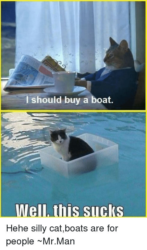 Are I For On Me Hehe Silly A Sucks ~mrman me Meme Should This Catboats Buy People Well Boat