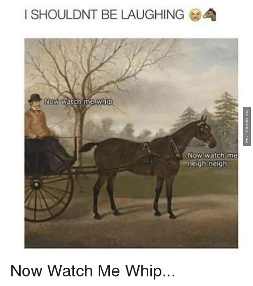 Memes, Watch Me, and Whip: I SHOULDNT BE LAUGHING  Now Watch me whip  Now watch me  neigh neigh Now Watch Me Whip...
