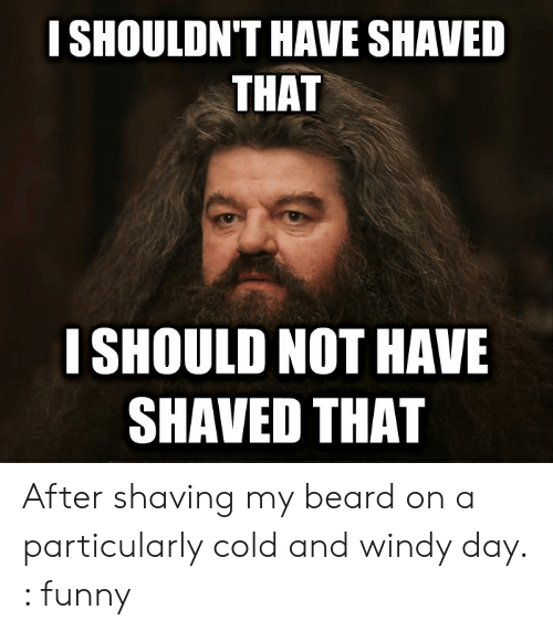 Beard, Funny, and Cold: I SHOULDN'T HAVE SHAVED  THAT  I SHOULD NOT HAVE  SHAVED THAT After shaving my beard on a particularly cold and windy day. : funny