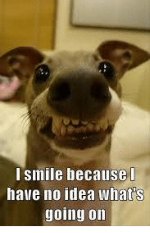 i smile because i have no idea what s going on meme on me me