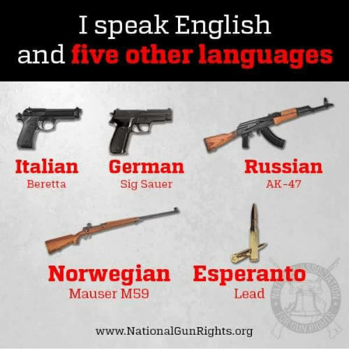 I Speak English and Five Other Languages Italian German