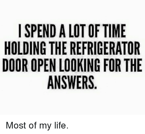 Dank, 🤖, and Lots: I SPEND A LOT OF TIME  HOLDING THE REFRIGERATOR  DOOR OPEN LOOKING FOR THE  ANSWERS Most of my life.