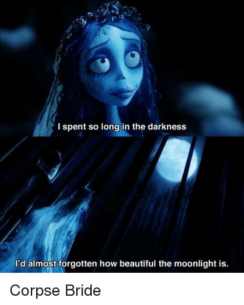 I Spent So Long In The Darkness Id Almost Forgotten How Beautiful