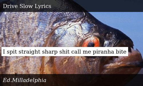 I Spit Straight Sharp Shit Call Me Piranha Bite | Donald Trump Meme