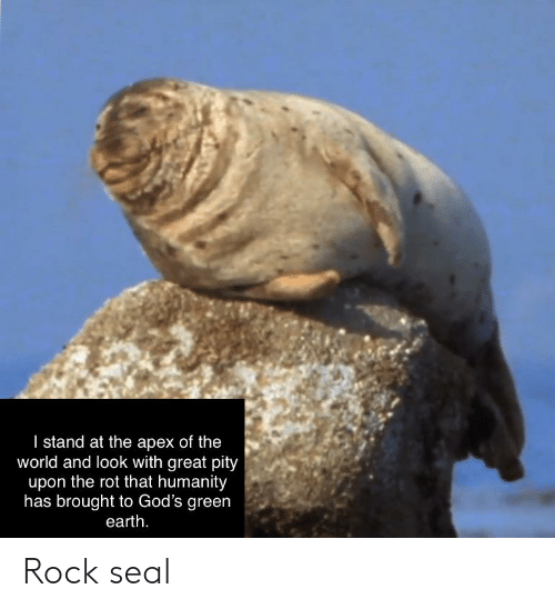 Apex, Earth, and Seal: I stand at the apex of the  world and look with great pity  upon the rot that humanity  has brought to God's green  earth Rock seal