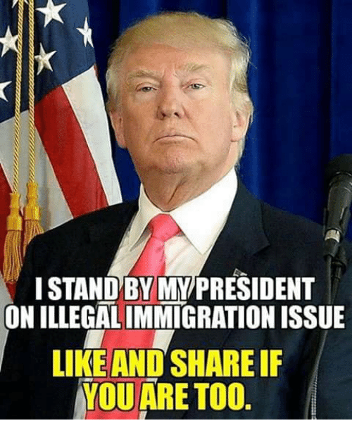 Memes, 🤖, and President: I STANDBY MY/PRESIDENT  ON  ILLEGALIMMIGRATION ISSUE  LIKE AND SHARE IF  YOU ARE TOO
