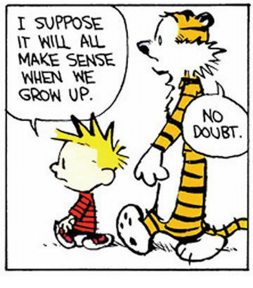 ce1d3a2d4 I SUPPOSE IT WILL ALL MAKE SENSE WHEN WE GROW UP No DOUBT | Doubt ...