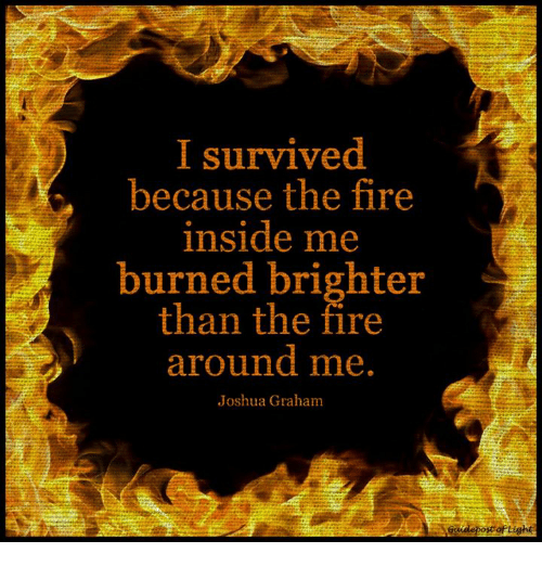 Bilderesultat for i survived because the fire inside me