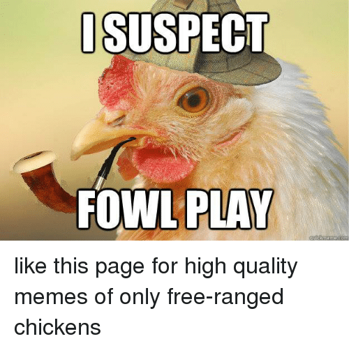 Meme, Memes, and Chicken: I SUSPECT  FOWL PLAY  ckmeme like this page for high quality memes of only free-ranged chickens