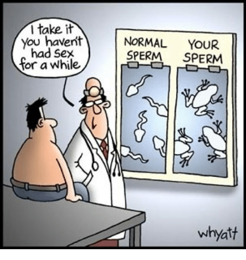 sperm normal and sexs i take it you havent normal your had sex sperm sperm for a while whyatt - Off Color Cartoons