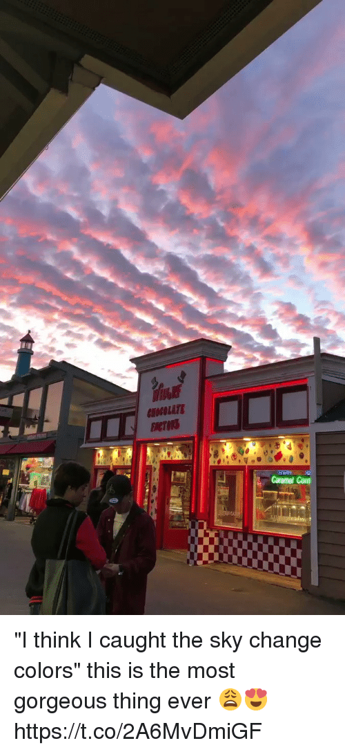 """Gorgeous, Girl Memes, and Change: """"I think I caught the sky change colors"""" this is the most gorgeous thing ever 😩😍 https://t.co/2A6MvDmiGF"""