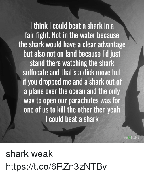 Yeah, Shark, and Chive: I think I could beat a shark in a  fair fight. Not in the water because  the shark would have a clear advantage  but also not on land because I'd just  stand there watching the shark  suffocate and that's a dick move but  if you dropped me and a shark out of  a plane over the ocean and the only  way to open our parachutes was for  one of us to kill the other then yeah  l could beat a shark  the CHIVE shark weak https://t.co/6RZn3zNTBv