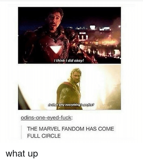 Memes, Thot, and Marvel: I think i did okay!  thot why everythingsonc  odins-one-eved-fuck:  THE MARVEL FANDOM HAS COME  FULL CIRCLE what up