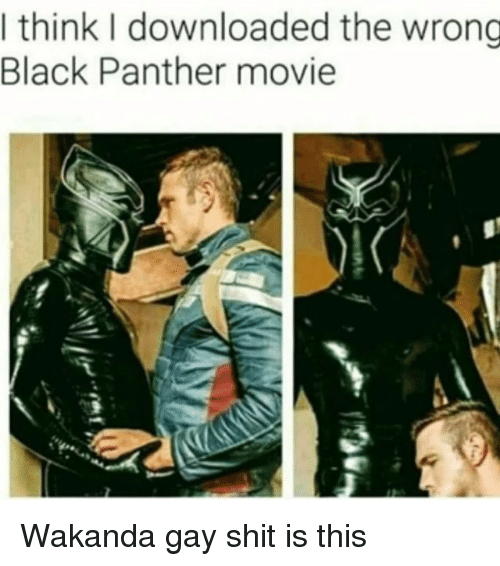 I Think I Downloaded the Wrong Black Panther Movie Wakanda