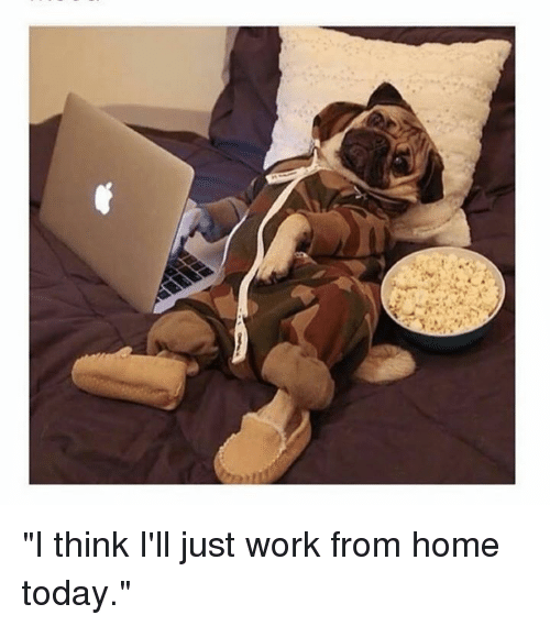 25 best memes about work from home work from home memes for Work from home pictures