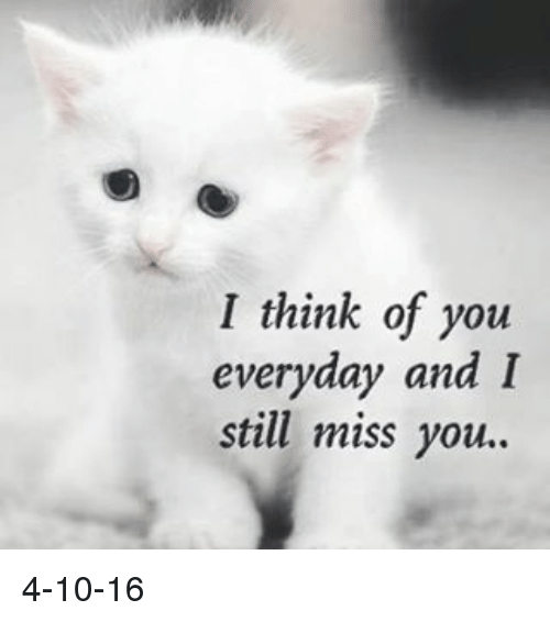 I Think Of You Everyday And I Still Miss You 4 10 16 Meme On Meme