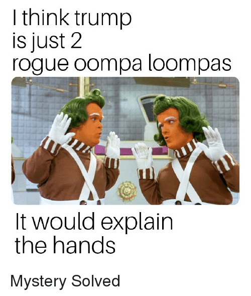 Politics, Rogue, and Trump: I think trump  is just 2  rogue oompa loompas  It would explain  the hands