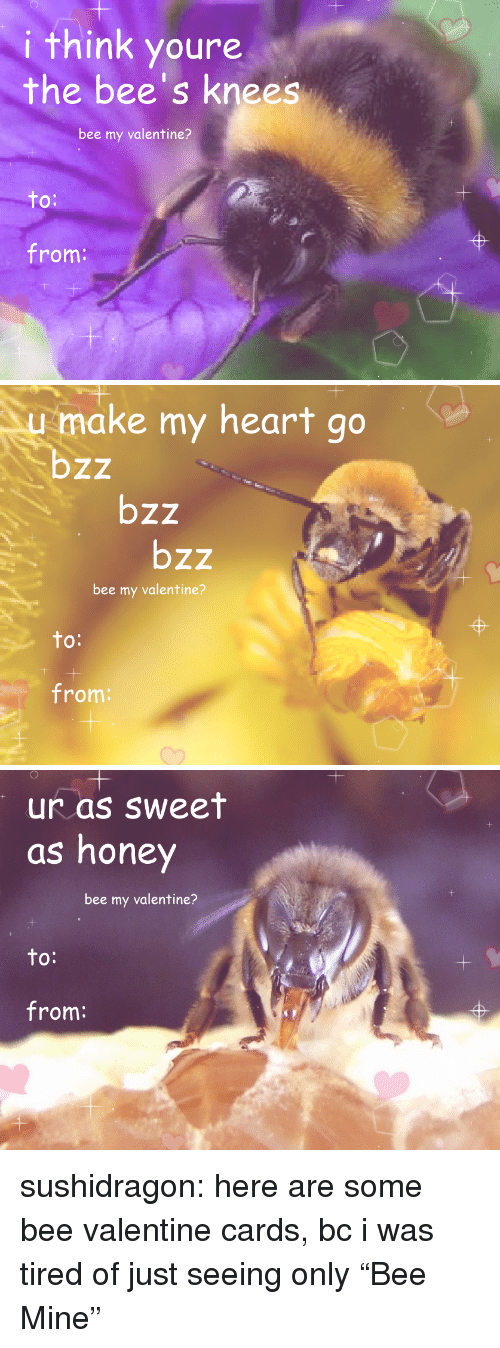 """Target, Tumblr, and Blog: i think youre  the bee's knees  bee my valentine?  to  O:  from:   1  make my heart go  bzz  bzz  bzz  bee my valentine?  to  O:  from:   1  1  ur as sweet  as honey  bee my valentine?  to:  from: sushidragon: here are some bee valentine cards, bc i was tired of just seeing only""""Bee Mine"""""""