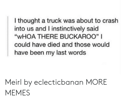"""Dank, Memes, and Target: I thought a truck was about to crash  into us and I instinctively said  """"WHOA THERE BUCKAROO""""    could have died and those would  have been my last words Meirl by eclecticbanan MORE MEMES"""