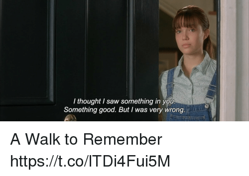 Memes, Saw, and Good: I thought I saw something in you  Something good. But I was very wrong A Walk to Remember https://t.co/lTDi4Fui5M