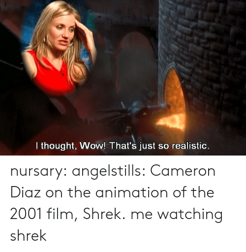 Shrek, Target, and Tumblr: I thought, Wow! That's just so realistic. nursary:  angelstills:  Cameron Diaz on the animation of the 2001 film, Shrek.  me watching shrek