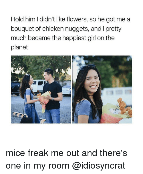 Memes, 🤖, and Mice: I told him I didn't like flowers, so he got me a  bouquet of chicken nuggets, and l pretty  much became the happiest girl on the  planet mice freak me out and there's one in my room @idiosyncrat
