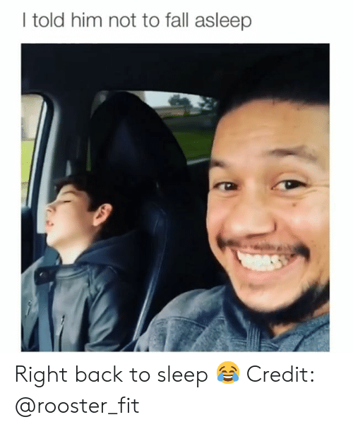 Fall, Memes, and Sleep: I told him not to fall asleep Right back to sleep 😂 Credit: @rooster_fit