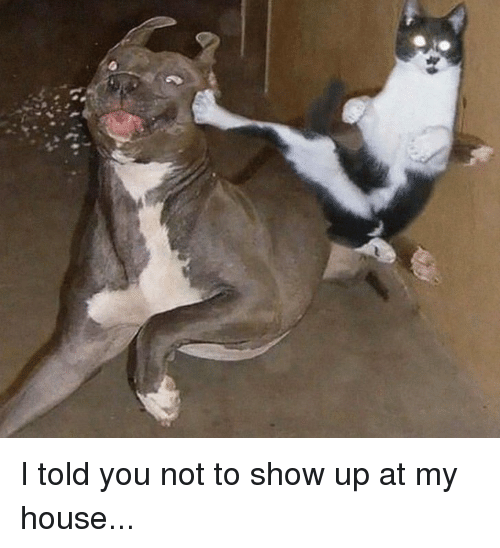 I Told You Not To Show Up At My House Funny Meme On Meme