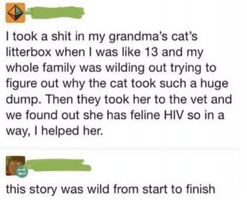 Cats, Family, and Memes: I took a shit in my grandma's cat's  litterbox when I was like 13 and my  whole family was wilding out trying to  figure out why the cat took such a huge  dump. Then they took her to the vet and  we found out she has feline HIV so in a  way, I helped her.  this story was wild from start to finish
