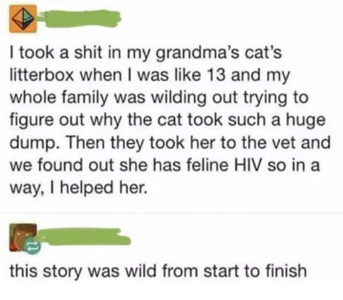 Cats, Family, and Shit: I took a shit in my grandma's cat's  litterbox when I was like 13 and my  whole family was wilding out trying to  figure out why the cat took such a huge  dump. Then they took her to the vet and  we found out she has feline HIV so in a  way, I helped her.  this story was wild from start to finish