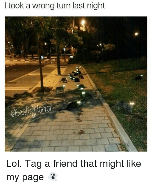 I Took a Wrong Turn Last Night Lol Tag a Friend That Might