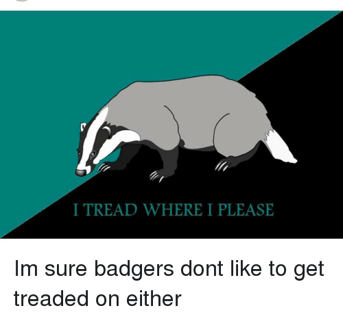 Tell me more about why you don't like badgers