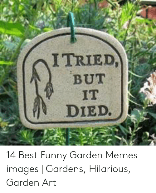 I TRIED BUT 1 IT DIED 14 Best Funny Garden Memes Images