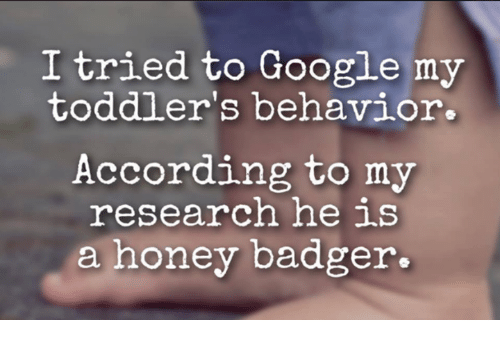 Memes, Honey Badger, and 🤖: I tried to Google my  toddler's behavior.  According to my  research he is  a honey badger.