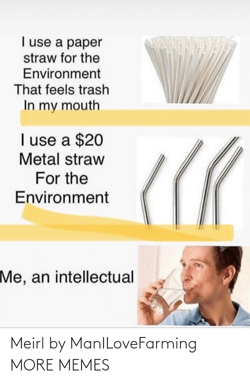 Dank, Memes, and Target: I use a paper  straw for the  Environment  That feels trash  In my mouth  I use a $20  Metal straw  For the  Environment  Me, an intellectual Meirl by ManILoveFarming MORE MEMES
