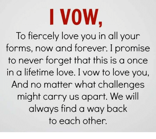 We Love Each Other Meme: I VOW To Fiercely Love You In All Your Forms Now And