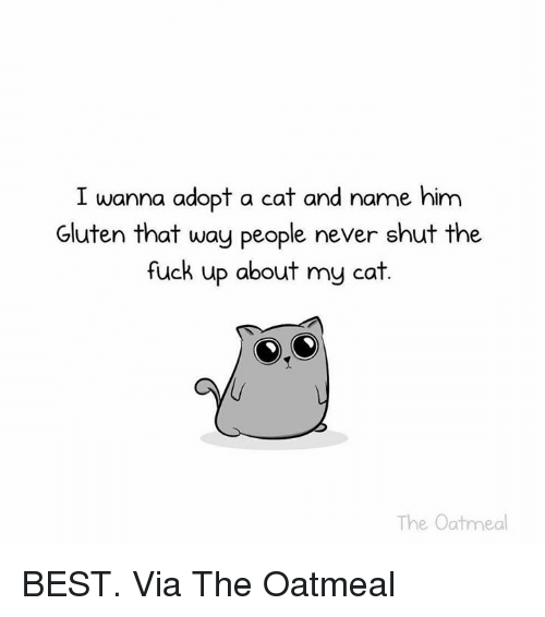 I Wanna Adopt A Cat And Name Him Gluten That Way People Never Shut