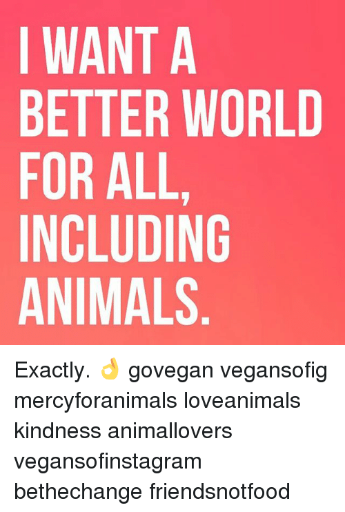 Animals, Memes, and World: I WANT A  BETTER WORLD  FOR ALL  INCLUDING  ANIMALS Exactly. 👌 govegan vegansofig mercyforanimals loveanimals kindness animallovers vegansofinstagram bethechange friendsnotfood