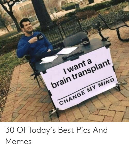 Memes, Best, and Brain: I want a  brain transplant  CHANGE MY MIND 30 Of Today's Best Pics And Memes