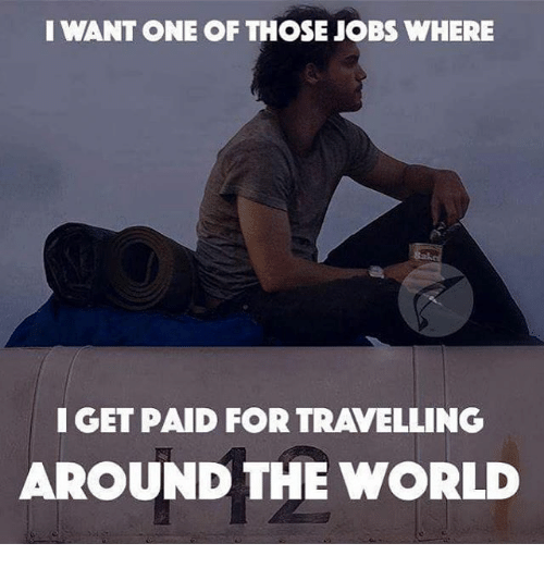 Memes, Travel, and 🤖: I WANT ONE OF THOSE JOBS WHERE  I GET PAID FOR TRAVELLING  AROUND THE WORLD