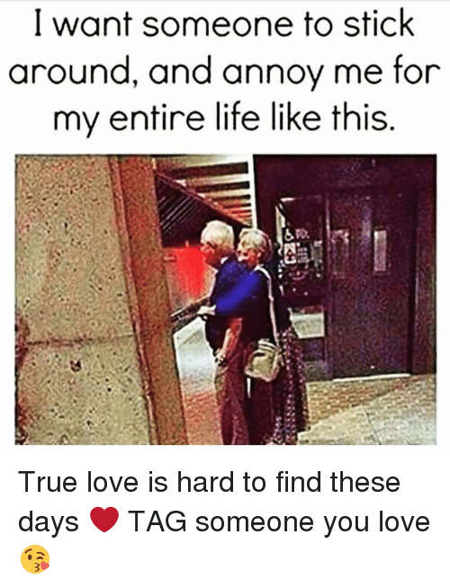 I want to find my true love