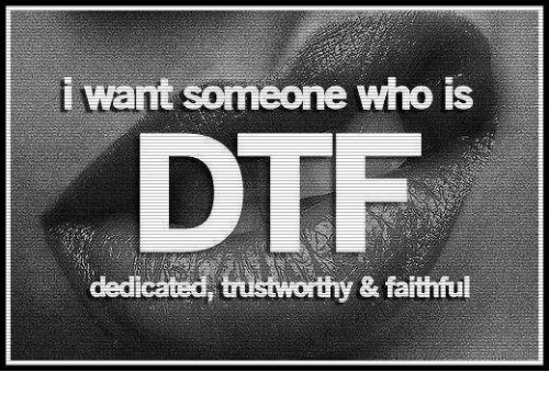 Dtf, Memes, and Faith: i want someone who is  DTF  dedicated, trustworthy & faithful