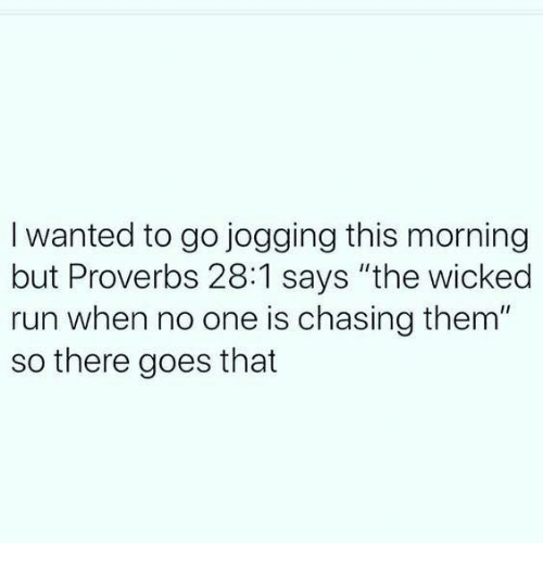 "Memes, Run, and Wicked: I wanted to go jogging this morning  but Proverbs 28:1 says ""the wicked  run when no one is chasing them""  so there goes that"