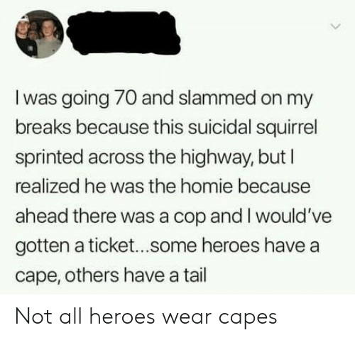 Homie, Heroes, and Squirrel: I was going 70 and slammed on my  breaks because this suicidal squirrel  sprinted across the highway, butl  realized he was the homie because  ahead there was a cop and I would've  gotten a ticket...some heroes have a  cape, others have a tail Not all heroes wear capes