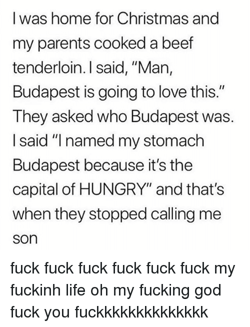 "Beef, Christmas, and Fuck You: I was home for Christmas and  my parents cooked a beef  tenderloin. I said, ""Man,  Budapest is going to love this.""  They asked who Budapest was.  I said ""I named my stomach  Budapest because it's the  capital of HUNGRY"" and that's  when they stopped calling me  son fuck fuck fuck fuck fuck fuck my fuckinh life oh my fucking god fuck you fuckkkkkkkkkkkkkk"